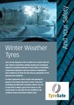 tsi_tsi_leaflets_winter