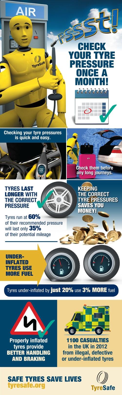 tsm2013_infographic